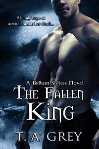 The Fallen King paranormal romance ebook