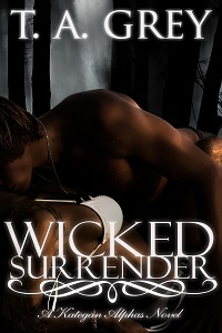 Wicked Surrender a werewolf romance novel